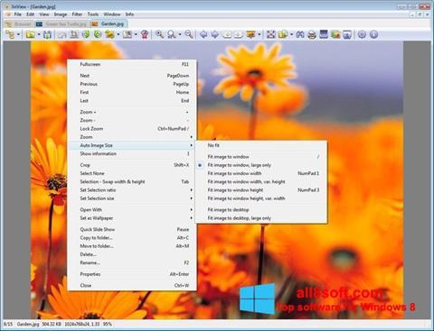 ภาพหน้าจอ XnView สำหรับ Windows 8